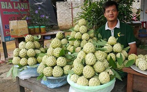 Lạng Sơn: Chợ na Chi Lăng nhộn nhịp mùa thu hoạch, nông dân thu nhập cả trăm triệu đồng - Ảnh 2