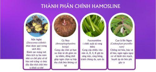 Hamosline - Sản phẩm giảm cân với tinh chất saponin quý hiếm - Ảnh 5