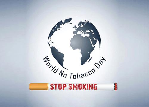 """""""NO SMOKING"""" ngày thế giới không thuốc lá và bài thuốc cai thuốc lá hiệu quả - Ảnh 1"""