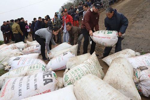 Hà Nội: Hàng vạn người phóng sinh 5 tấn cá xuống sông Hồng - Ảnh 1