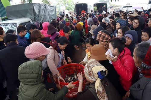 Hà Nội: Hàng vạn người phóng sinh 5 tấn cá xuống sông Hồng - Ảnh 2