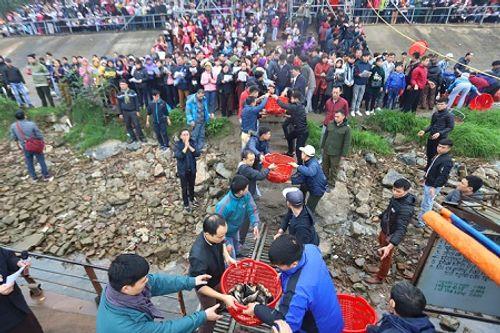 Hà Nội: Hàng vạn người phóng sinh 5 tấn cá xuống sông Hồng - Ảnh 3