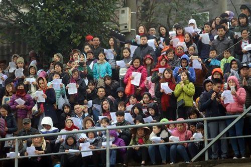 Hà Nội: Hàng vạn người phóng sinh 5 tấn cá xuống sông Hồng - Ảnh 6
