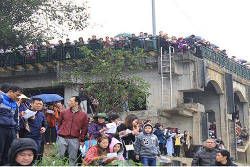 Hà Nội: Hàng vạn người phóng sinh 5 tấn cá xuống sông Hồng - Ảnh 7