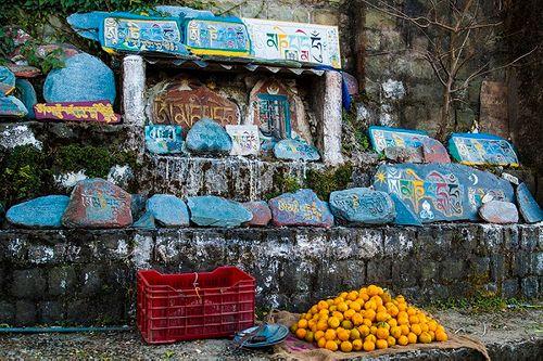 Ngôi làng nơi Đà Lai Lạt Ma từng lưu vong trong hơn nửa thế kỷ giờ ra sao? - Ảnh 6