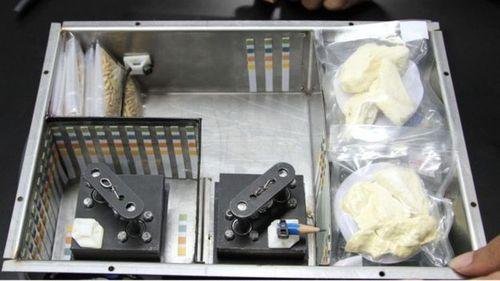 Thái Lan công bố kế hoạch mang sầu riêng đặc sản vào vũ trụ  - Ảnh 1