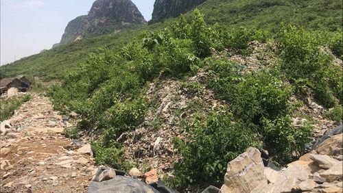 """Thuê đất """"đổ bậy"""" 600 tấn rác ở Hòa Bình: Huyện Lương Sơn """"loay hoay"""" xử lý  - Ảnh 2"""