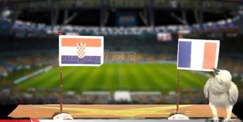 """Dự đoán chung kết World cup 2018 Pháp – Croatia gây sốc của các """"nhà tiên tri"""" - Ảnh 4"""