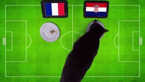 """Dự đoán chung kết World cup 2018 Pháp – Croatia gây sốc của các """"nhà tiên tri"""" - Ảnh 2"""