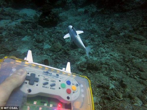Chú cá robot có thể bơi ở độ sâu 15m mà không bị phát hiện  - Ảnh 2