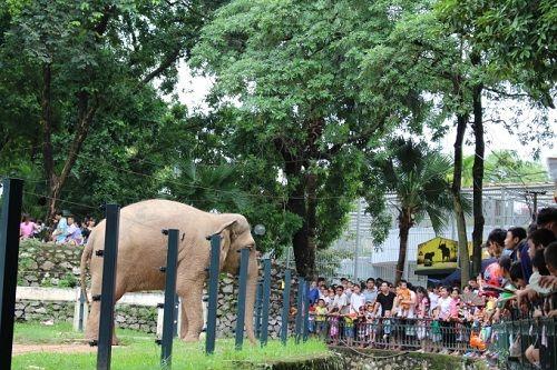 Những điểm vui chơi hấp dẫn tại Hà Nội dịp nghỉ lễ 30/4 -1/5 - Ảnh 3