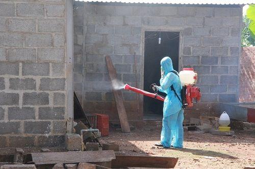 Đắk Lắk: Xuất hiện ổ dịch cúm A/H1N1 tại gia đình chăn nuôi gà - Ảnh 1