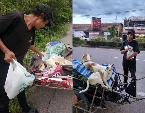 Cảm động người đàn ông đi bộ hơn 1.500 km để thực hiện lời hứa với bạn gái - Ảnh 2