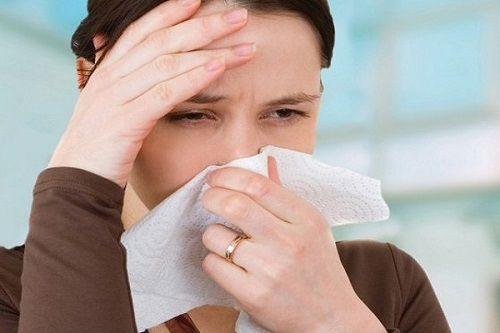 5 bài thuốc trị viêm mũi dị ứng vừa hiệu quả vừa an toàn - Ảnh 1