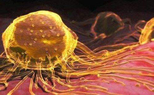 """""""Thần dược"""" nano vàng: Chết vì ngộ độc trước khi chữa được ung thư! - Ảnh 4"""