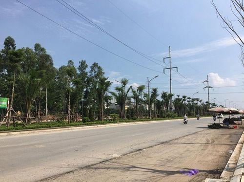 Thi công thần tốc tại tuyến đường trục phía Nam Hà Nội - Ảnh 10