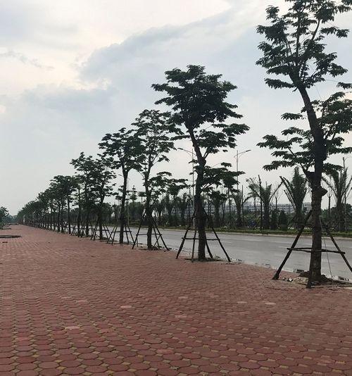 Thi công thần tốc tại tuyến đường trục phía Nam Hà Nội - Ảnh 9