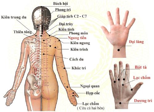 Huớng dẫn phương pháp bấm huyệt chữa đau mỏi vai gáy dễ thực hiện tại nhà - Ảnh 3