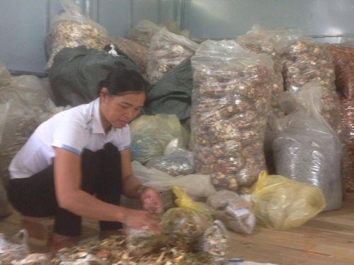 Giúp hàng ngàn bệnh nhân thoát khỏi đau nhức xương khớp nhờ kế thừa những tinh hoa người Dao  - Ảnh 1