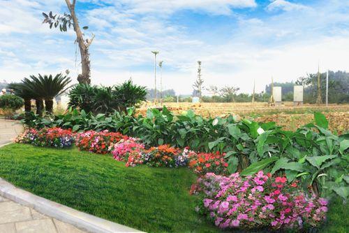 TMS Grand City Phuc Yen tri ân khách hàng hơn 1 tỉ đồng dịp Tết - Ảnh 4
