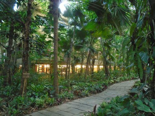 Maxport Limited Vietnam - doanh nghiệp tiên phong kiến tạo môi trường xanh cho người lao động - Ảnh 1