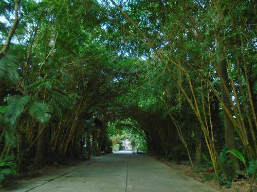 Maxport Limited Vietnam - doanh nghiệp tiên phong kiến tạo môi trường xanh cho người lao động - Ảnh 2