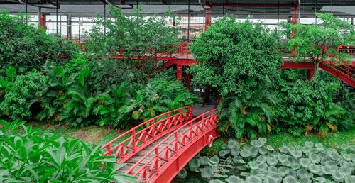 Maxport Limited Vietnam - doanh nghiệp tiên phong kiến tạo môi trường xanh cho người lao động - Ảnh 3