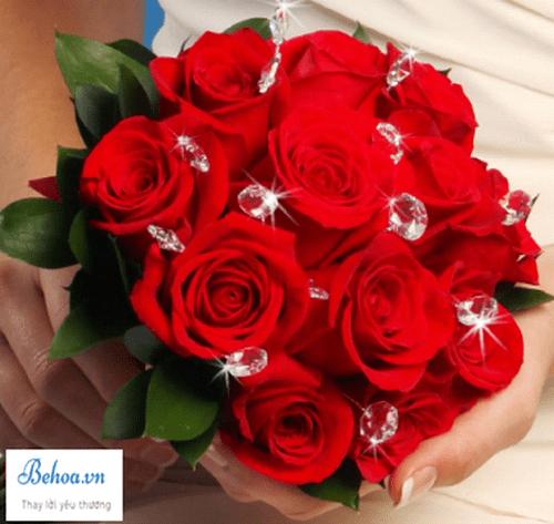 Đại chiến hoa hồng trong tiệm hoa xinh đẹp - Ảnh 2