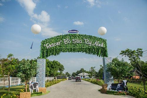 """""""Resort"""" bò sữa Vinamilk Tây Ninh – Ngôi nhà lý tưởng của những """"cô bò"""" hạnh phúc - Ảnh 2"""