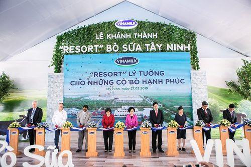 """""""Resort"""" bò sữa Vinamilk Tây Ninh – Ngôi nhà lý tưởng của những """"cô bò"""" hạnh phúc - Ảnh 4"""
