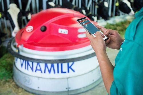 """""""Resort"""" bò sữa Vinamilk Tây Ninh – Ngôi nhà lý tưởng của những """"cô bò"""" hạnh phúc - Ảnh 5"""