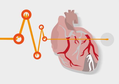 Chìa khóa bảo vệ người bị suy tim do cao huyết áp - Ảnh 2
