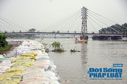 Hà Nội: Hơn 6.000 người dân Chương Mỹ sơ tán do ngập lụt - Ảnh 1