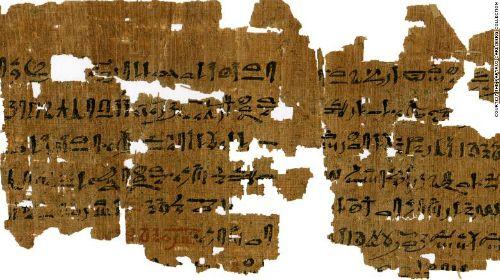 3.500 năm về trước, phụ nữ Ai Cập thử thai kỳ bằng lúa mạch, lúa mì - Ảnh 1