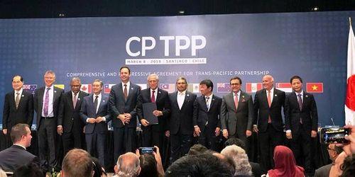 CPTPP chính thức có hiệu lực với Việt Nam - Ảnh 1