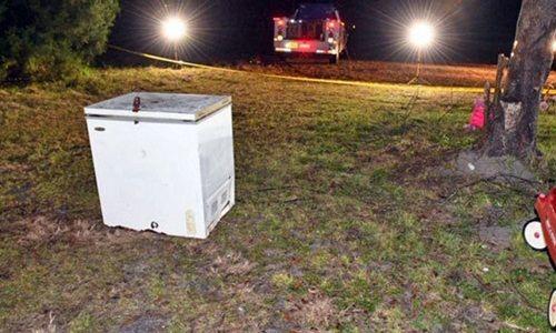 Kinh hoàng phát hiện 3 em nhỏ chết thương tâm trong tủ đông lạnh  - Ảnh 1