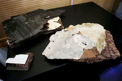 5 mảnh vỡ người nhà hành khách MH370 cung cấp hé lộ thông tin quan trọng - Ảnh 2