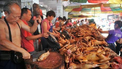 """Vì sao """"kinh đô thịt chó Nhật Tân"""" tàn lụi, hơn 50 hàng giờ chỉ còn 1? - Ảnh 1"""