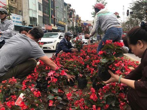 """Ngao ngán cảnh người dân thủ đô đánh cả ô tô đến """"hôi hoa"""" trên đường Kim Mã - Ảnh 1"""