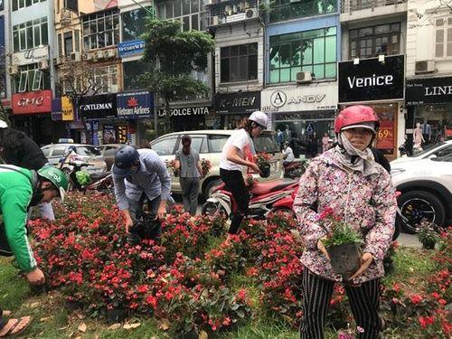 """Ngao ngán cảnh người dân thủ đô đánh cả ô tô đến """"hôi hoa"""" trên đường Kim Mã - Ảnh 2"""