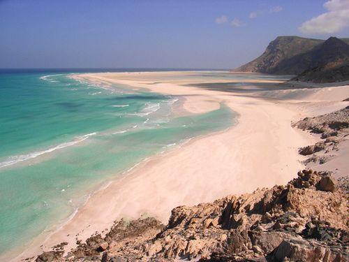 """Bí mật hòn đảo """"ngoài hành tinh"""" Socotra và loài cây """"chảy máu"""" - Ảnh 5"""