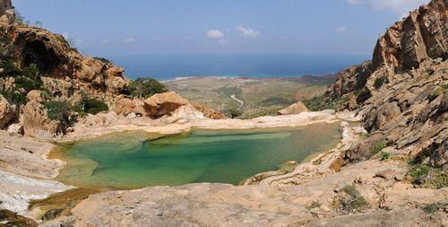 """Bí mật hòn đảo """"ngoài hành tinh"""" Socotra và loài cây """"chảy máu"""" - Ảnh 7"""