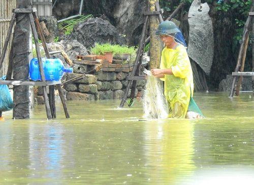 Quảng Ninh: Mưa lớn khiến nhiều nơi ngập sâu tới 2m, chia cắt quốc lộ 18A - Ảnh 13