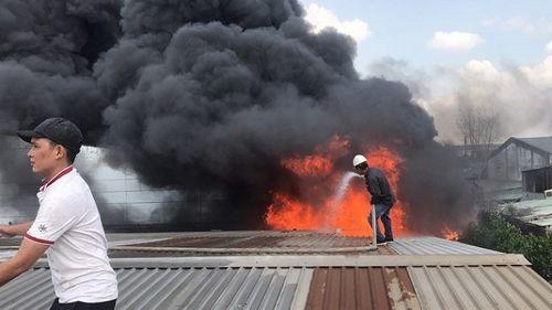 Hiện trường tan hoang vụ hỏa hoạn thiêu rụi xưởng gỗ 5.000m2 - Ảnh 4