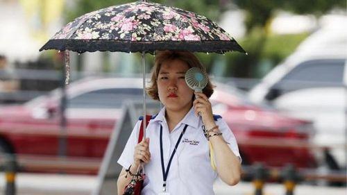 Nắng nóng kỷ lục ở Hàn Quốc: 28 người thiệt mạng, 2.266 người mắc hội chứng tim mạch - Ảnh 4