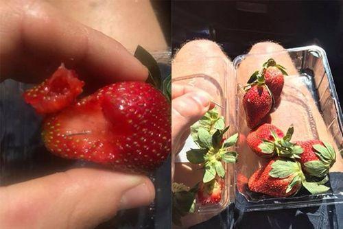 Bắt giữ nghi phạm đầu tiên trong vụ kim khâu bị gài vào hoa quả tươi tại Úc - Ảnh 1