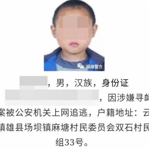 Cảnh sát Trung Quốc hứng chỉ trích vì dùng ảnh hồi nhỏ để truy bắt tội phạm - Ảnh 1