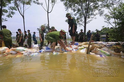 Hàng trăm chiến sĩ cùng người dân đắp đê ở Hòa Bình - Ảnh 7