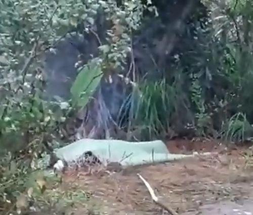Công an thông tin chính thức vụ người đàn ông tử vong bất thường trong vườn nhà - Ảnh 1