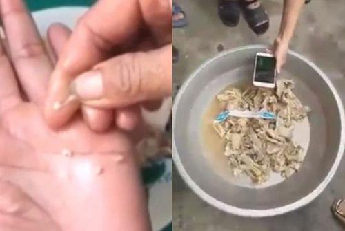 Vụ nghi tuồn thịt bẩn vào trường mầm non ở Bắc Ninh: Thịt gà đạt chỉ tiêu an toàn thực phẩm - Ảnh 1